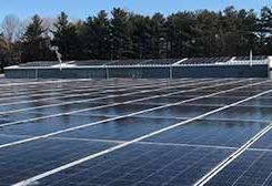Cam Tran Solar Plants